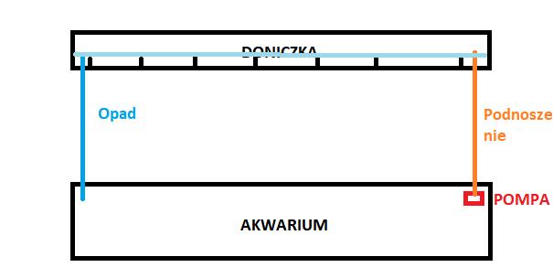 hydroponika