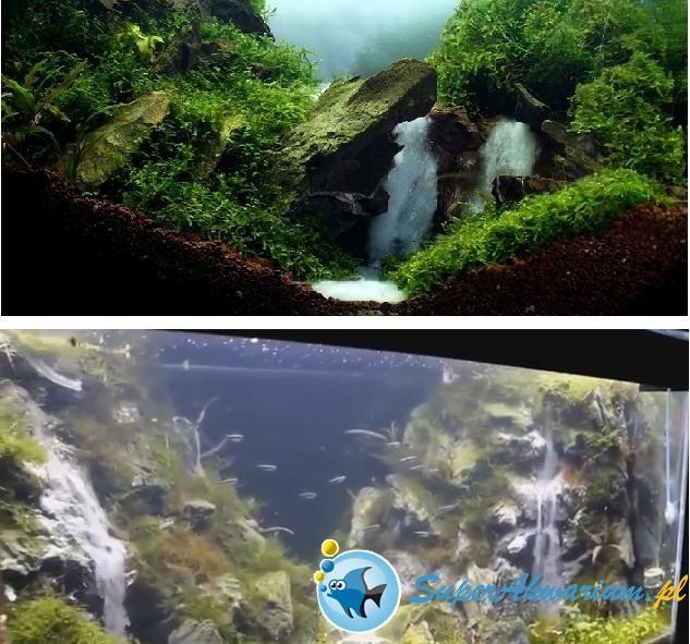 Wodospad akwarium.JPG
