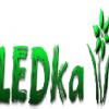 LEDka
